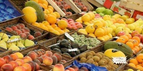 Le prix des fruits a augmenté cet été, tandis que les légumes sont en baisse | Agriculture en Dordogne | Scoop.it