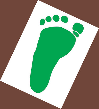 What is an Ecological Footprint? « The Green Dandelion | Trendy Ecofriendly Mag | Scoop.it