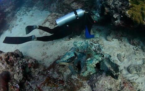 Dont you wish it were you? Divers find wreck of legendary pirate treasure ship | Indigo Scuba | Scoop.it