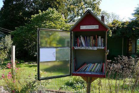 États-Unis : des bibliothèques en libre accès dévalisées | Bibliothèque et Techno | Scoop.it