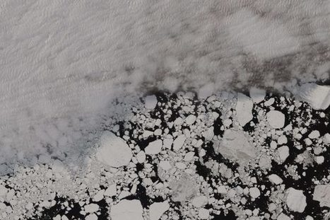 Is Arctic sea ice more resilient than scientists thought? Yes and no. | NWT News | Scoop.it