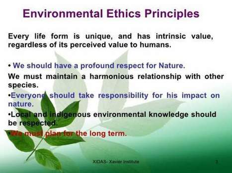 Environmental Ethics Examples