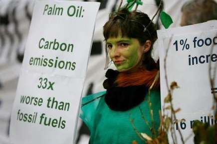 Forest-destroying palm oil powers cars in EU: report | Sustain Our Earth | Scoop.it