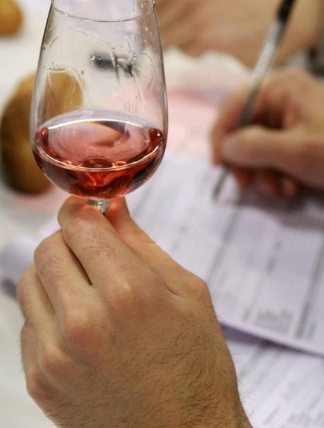 Concours général agricole : découvrez les vins de pays charentais ... - Sud Ouest | Route des vins | Scoop.it