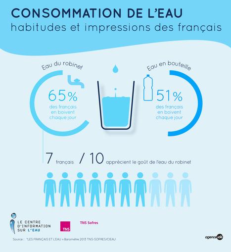 Consommation de l'eau, habitudes et impressions des Français | L'eau en chiffres | Scoop.it
