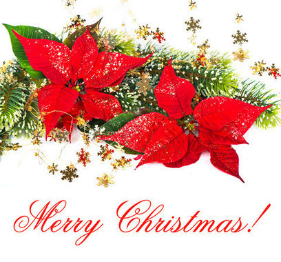 Christmas Facebook Status | Christmas Day Ideas And Gifts 2013 | ChristmasDay25 | Scoop.it