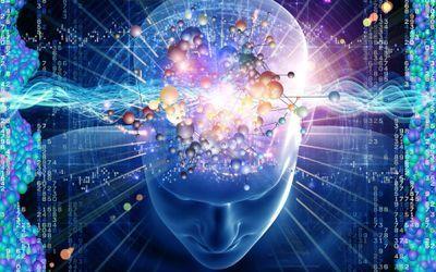 Attractive Arenas Of Neurology A Click Away   Attractive Arenas Of Neurology A Click Away   Scoop.it