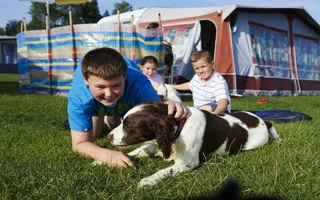 Spend time with your Dog at the Caravan Holiday Park | Caravanning Camping Tips, Holidays & Accessories | Scoop.it