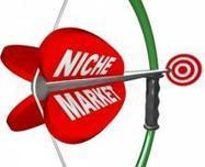 Defining Your Niche to Grow Your Business - Accountingweb.com | Grow Your Service Firm | Scoop.it