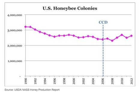 Monsanto Company's Plan to Silence Its Critics and Save the Honeybees (DOW, MON, SYT) | BiotechRegulation | Scoop.it
