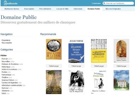 Des livres dans le domaine public | Informatique | Scoop.it