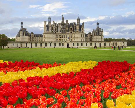 Val de Loire : balade dans les jardins des châteaux de la Renaissance - TourMaG.com   Parcs et Jardins à visiter dans le Val de Loire   Scoop.it