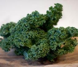 Paleo to Kale: Five Diet and Nutrition Trends from 2013 | Better Health | Scoop.it