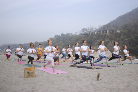 Join the Free 300 Hour Yoga Teacher Training on This International Yoga Day 2016 /PR Newswire India/ | Yoga and Meditation | Scoop.it