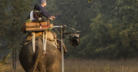 And then we strapped a helicopter rig to an elephant | Pachyderm Magazine | Scoop.it