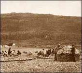 Push and Pull Factors: 19th Century Migration: Newfoundland and Labrador Heritage   Immigration to the U.S from Mexico & Europe   Scoop.it