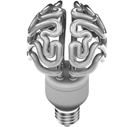 Can Leadership Be Mentored?   Learning, Brain & Cognitive Fitness   Scoop.it