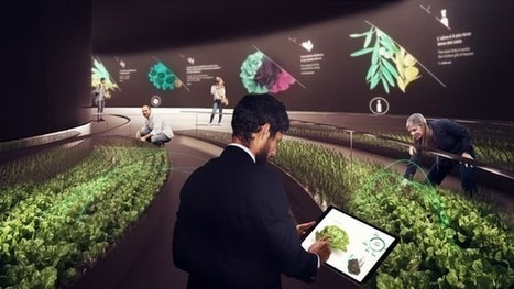 Future farming pavilion reboots the veggie patch | Knowmads, Infocology of the future | Scoop.it
