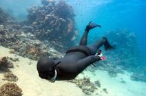 Freediving | Scuba Diving News | Scoop.it