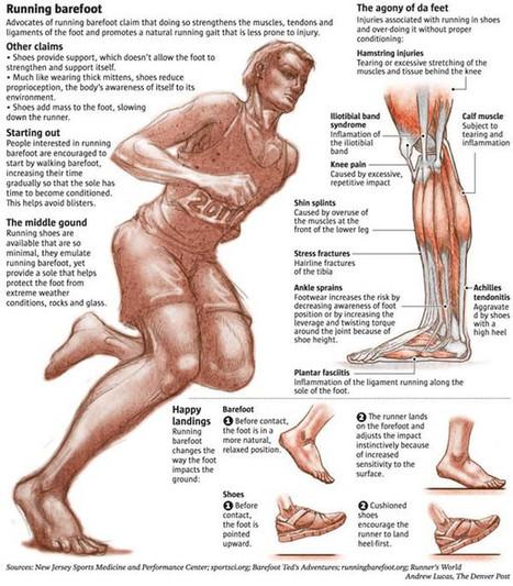 Nacidos para correr descalzos (II): Barefoot Running. Argumentos a favor y en contra de zapatillas minimalistas.. | ESPORT I SALUT | Scoop.it
