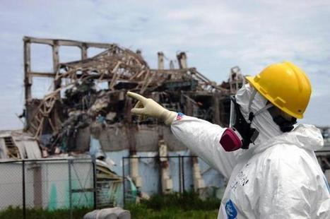 JAPAN: Record levels of radiation in greenling fish found near Fukushima   Nuclear energy use   Scoop.it