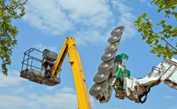 High quality tree pruning provided by Sunshine State Tree Service | Sunshine State Tree Service | Scoop.it