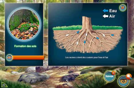 La Forêt Durable, un serious game sur le thème de la forêt | Serious-Game.fr | Eco-Development & Agro-Ecology | Scoop.it