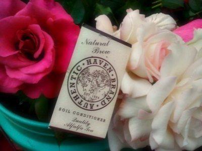 Extending Vase Life Of YourBlooms | Garden to Table | Scoop.it