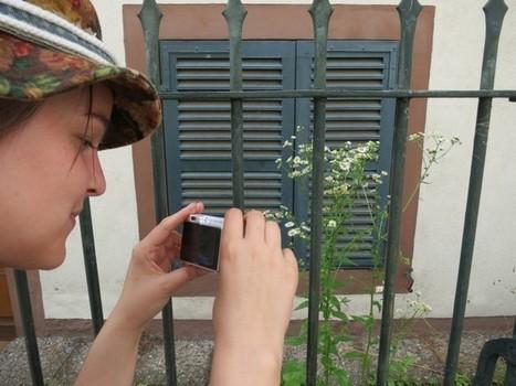 A la recherche des plantes sauvages... | Paris Kontrast | Nature en Ville | Scoop.it