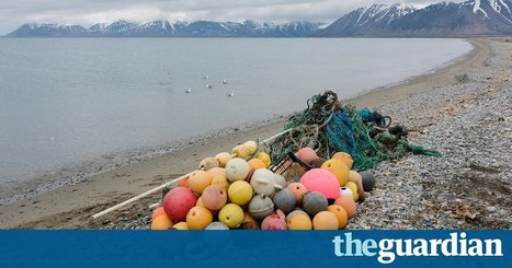 Plastic waste dumped in UK seas 'carried to Arctic within two years'   Plastic Pollution   Scoop.it