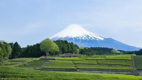 Le Japon envisage le recours à l'immigration pour son secteur agricole | Questions de développement ... | Scoop.it