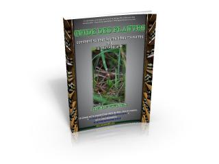 Initiez-vous à la phytothérapie grâce à cet e-book gratuit !   Huiles essentielles HE   Scoop.it