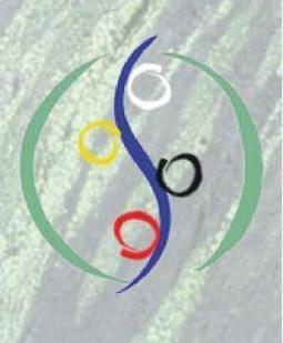 2012, année de l'ISO 26000? | Environment | Scoop.it