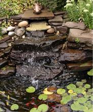 landscaping columbus ohio | TM Garden Design | Scoop.it