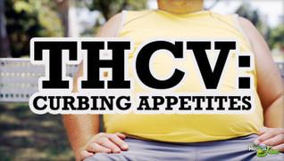 Tetrahydrocannabivarin (THCV): A Cannabinoid Fighting Obesity ... | Cannabis Law Reform | Scoop.it