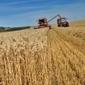 Poitou-Charentes : les grandes exploitations passent au bio | Des 4 coins du monde | Scoop.it