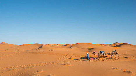 Morocco, From Coast to Desert | Voluntariado Digital - ENGLISH | Scoop.it