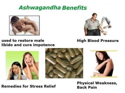 7 Amazing Benefits of Ashwagandha Root for Women   Planet Ayurveda   Scoop.it