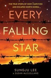 Rich in Color | Review: Every Falling Star | Young Adult Novels | Scoop.it