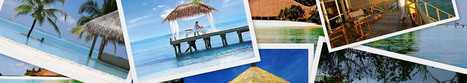 Holiday Packages - Indian Holidays |Vacation Package | Web Design Company,E commerce Development, SEO Services | Scoop.it