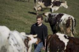 Une augmentation des volumes de lait bio partout en Europe | SCIENCES DE L'ANIMAL | Scoop.it