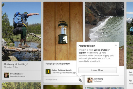 Promoted Pins Test a Success for Pinterest - SiteProNews | Pinterest | Scoop.it