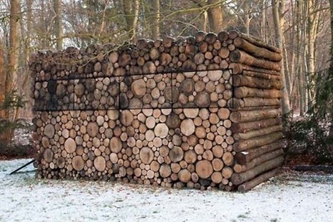 It Might Look Like A Normal Stack Of Firewood. But When You Step Closer... WHOA! | Sustainism | Scoop.it