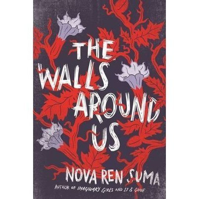 a review of The Walls Around Us | Young Adult Novels | Scoop.it