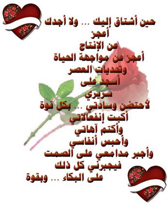 صور ورد رومانسي مكتوب عليها كلام وعبارات جميله 2013 ~ كلمه حزينه | yaseer 201 | Scoop.it