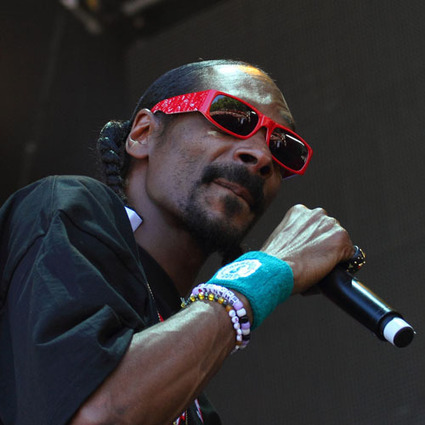 Snoop Dogg: 'The Music Industry Isn't in Decline'   Albumista   Kill The Record Industry   Scoop.it