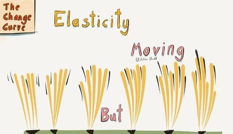Elasticity: Moving But Rooted | Business change | Scoop.it