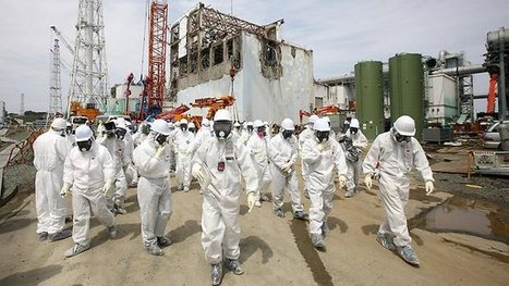 Safety fears after the Fukushima nuclear crisis have fuelled Japan's LNG ... - The Australian | Market research | Scoop.it