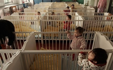 China's city of lost children brings in shelters for abandoned babies  - Telegraph | Developmental Psychology IB | Scoop.it