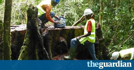 Democracy, forests and finance: the tech making Africa a better place | International aid trends from a Belgian perspective | Scoop.it